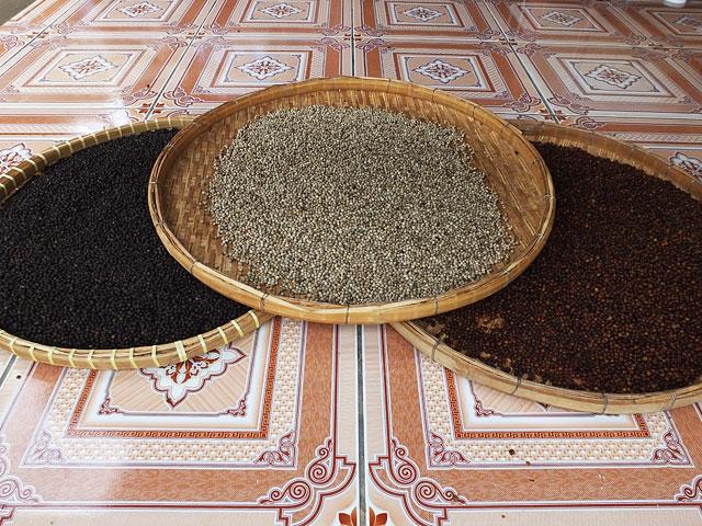 Le poivre de Kampot © Doré Elisa