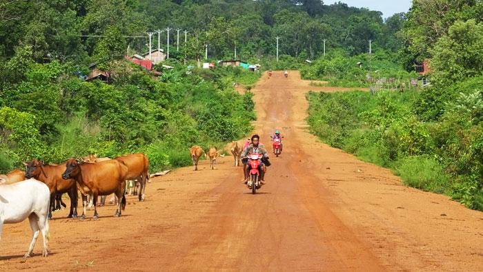 Sur la route dans la province de steung treng