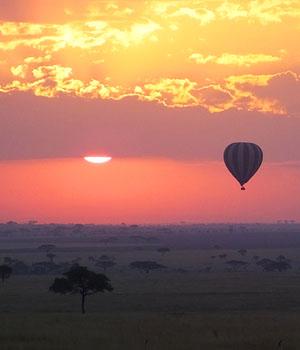 Serengeti - Tanzanie
